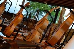 exposition d'instruments à cordes du Moyen-Age