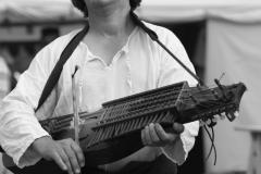 ménestrel jouant du nyckelharpa