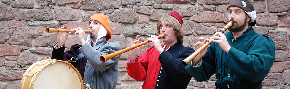 members of Hauvoy playing different medieval instruments